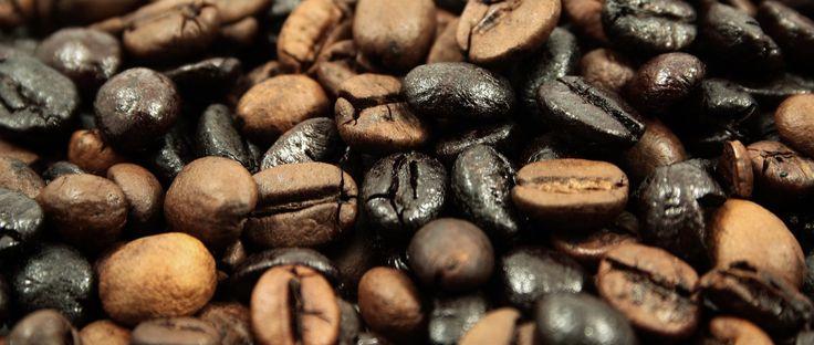 Где выращивается кофе. Страны-лидеры по потреблению кофе. Где открылась первая кофейня. Какой кофе содержит меньше кофеина. Сколько существует видов кофе.