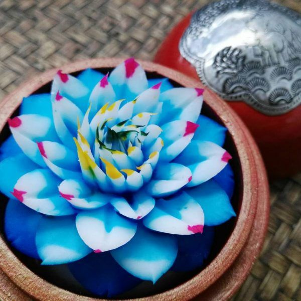 hand-carved-soap-flowers-in-decorative-gift-box-20