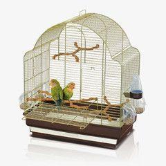 Вы собираетесь заводить попугая или птичку ? Или уже есть?  https://zoo-opt.com/g10326999-kletki-dlya-ptits  #Клетка является главной частью содержания пернатого любимца.