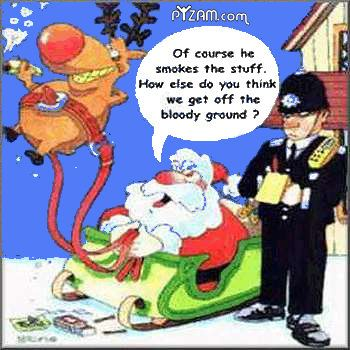 funny christmas pictures   Funny Christmas Comments Myspace Orkut Graphics Glitters Styles
