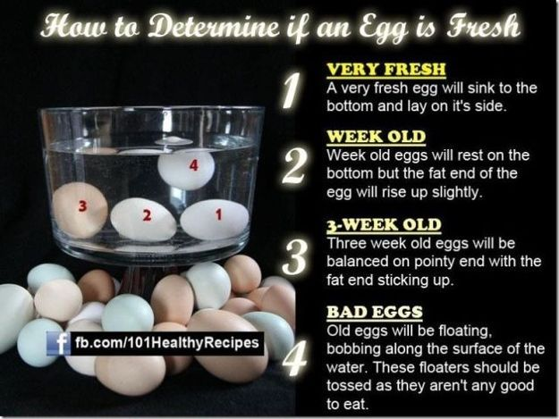 Know how to tell if your eggs are fresh.   Community Post: 37 Essential Life Hacks Every Human Should Know (life hacks buzzfeed cases)