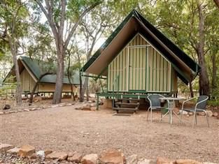 Emma Gorge resort tented cabins. This is my type of camping. An amazing place to stay. I had to rescue a tree frog out of a terrified friends toilet. I just love those little green guys