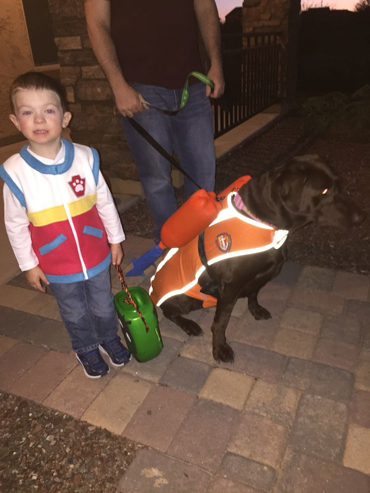 Ryder and Zuma from Paw Patrol for Halloween costumes    I dressed my son in a vest I ordered from Etsy and created the dog costume.