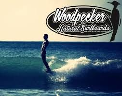 Image result for woodpecker surfboard