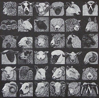 Hilary Paynter : Sheep Show at Davidson Galleries