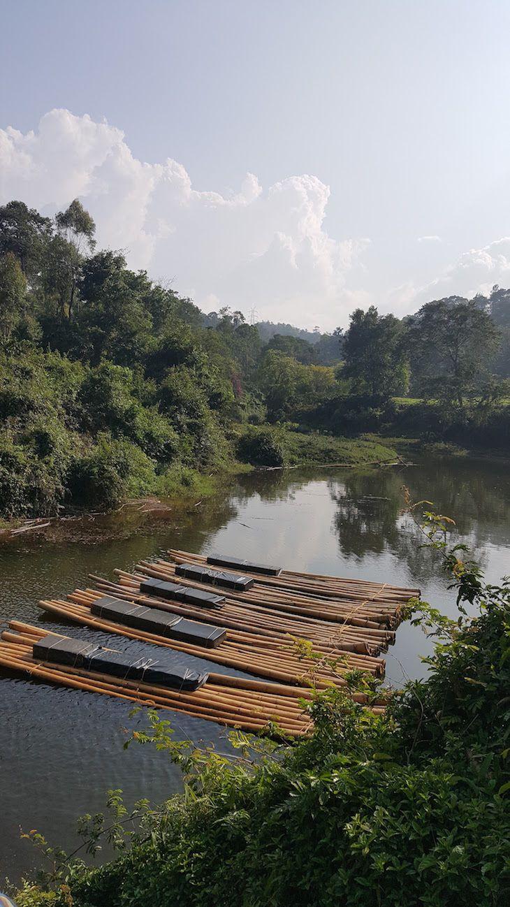 Pranavam Homestays, Wayanad, Kerala, Índia | Viaje Comigo