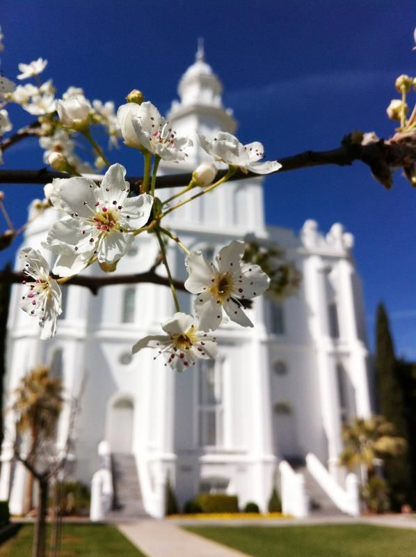 Beautiful St. George, Utah LDS Temple