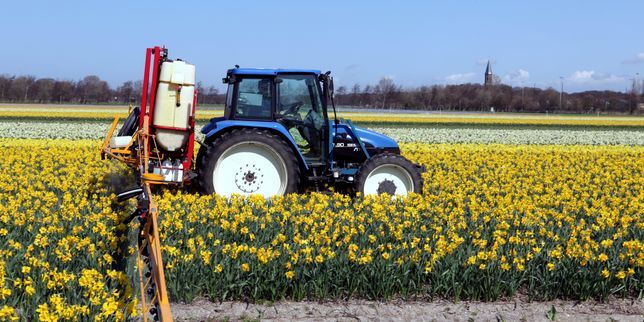 CHRISTIAN : Perturbateurs endocriniens : le cadeau discret mais majeur au lobby des pesticides