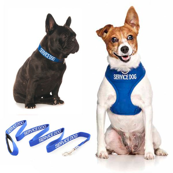 10% off small blue SERVICE DOG combo sets plus FREE SHIPPING within Australia. Model: French Bulldog & Jack Russell