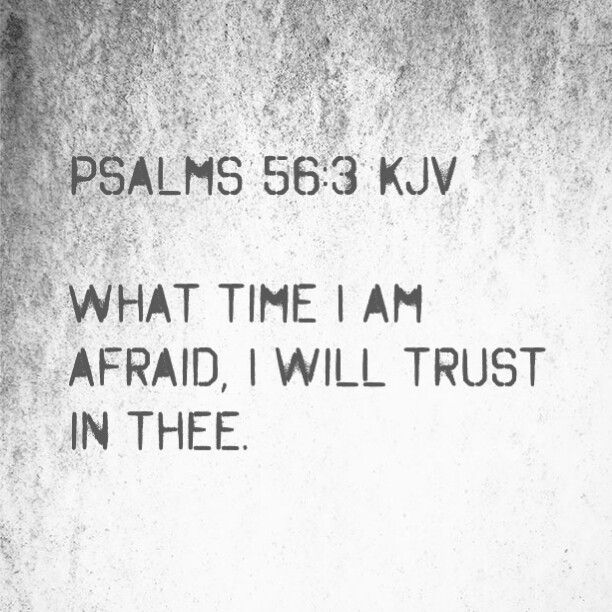 Psalms 56:3 KJV What time I am afraid, I will trust in thee. Salmos 56:3 RVR1960 En el día que temo, Yo en ti confío. #ShabbatShalom #ShabbatKodesh #שַׁבָּת #שאבּעס #SabbathDay #Sabado #Moed #Moedim #HappySabbath #PerpetualCovenant #SeventhDay #SeptimoDia #DivineAppointment #4thCommandment #Law #KeepItHoly #Remember #YHWH #Yeshua #RuachHaKodesh #Adonai #Challah #ShmitahYear #HolyScripture #BibleVerse #Bible #Biblia #WordofGod #WordofTruth #SwordofTheSpirit #WordofLife #KJV #Trust #Confiar…