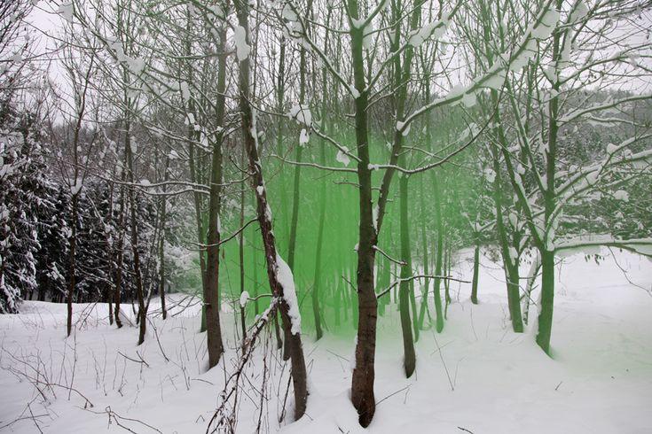 Filippo Minelli: Photographers, Artists, Silenceshap 10, Filippo Minelli, Art Photography, Green, Prints, Smoke Bombs, Art Projects