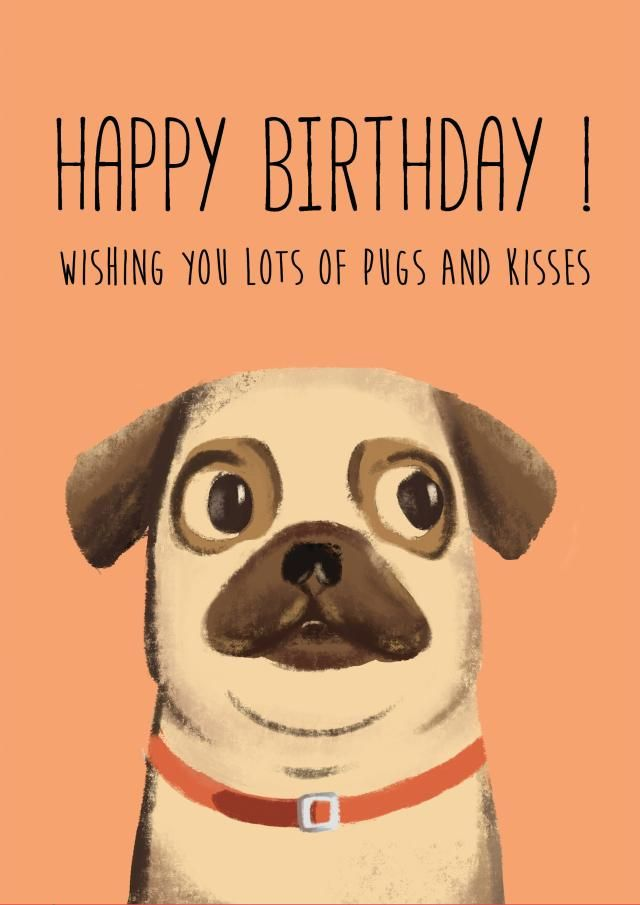 Pug Birthday Card Pugs Printable Art Greeting Card