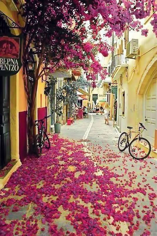 Greece http://www.yourcruisesource.com/two_chefs_culinary_cruise_-_istanbul_to_athens_greek_isles_cruise.htm