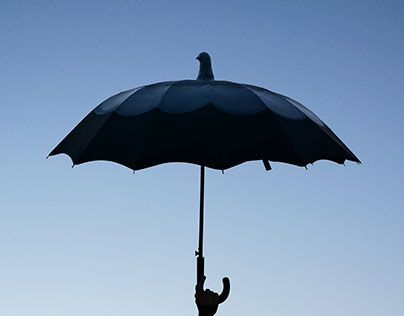 "Check out new work on my @Behance portfolio: ""pigeon umbrella"" http://be.net/gallery/35117241/pigeon-umbrella"