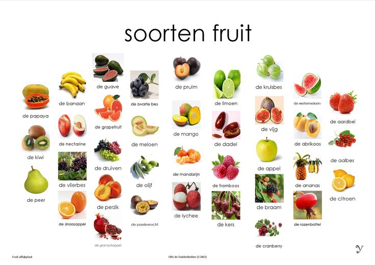 Mini Loco Fruit, afkijkplaat