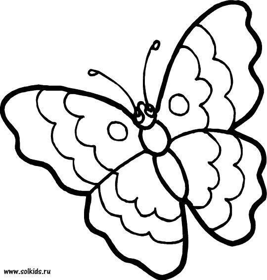 Раскраска Бабочка распечатать бесплатно для девочек ...