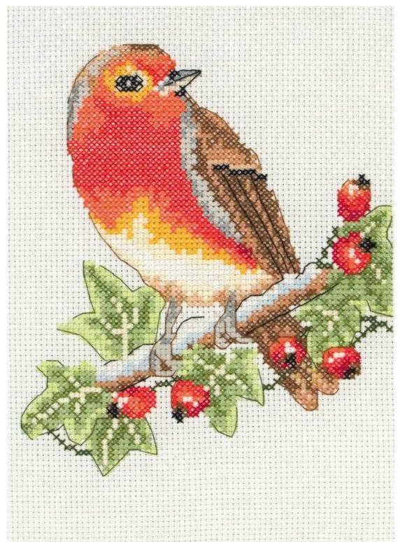 Red Robin Cross Stitch Starter Kit for Beginners