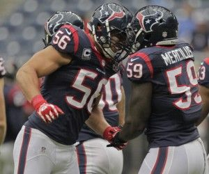 Texans Tickets: Was it Unnecessary Roughness? - #HoustonTexans Tickets Blog