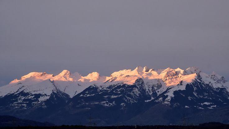 https://flic.kr/p/25cEw6V   Morning Rose: Good Morning Sunshine!   first rose-light early in the morning on swiss mountainrange of Gauschla, Alvier, Fulfirst and Gamsberg
