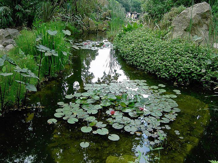 Giardini della mortella ischia fotografia meravigliosa pinterest - Giardino la mortella ...