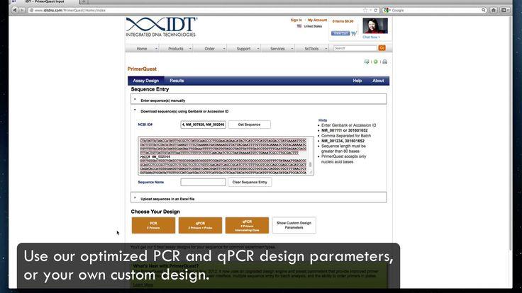 Design PCR and qPCR Primers with PrimerQuest
