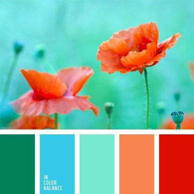 Green, turquoise, orange and red