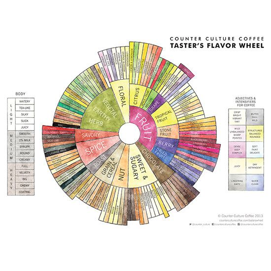 Counter Culture Coffee Taster's Flavor Wheel   If you love coffee like me I'm sure you'll know some of these