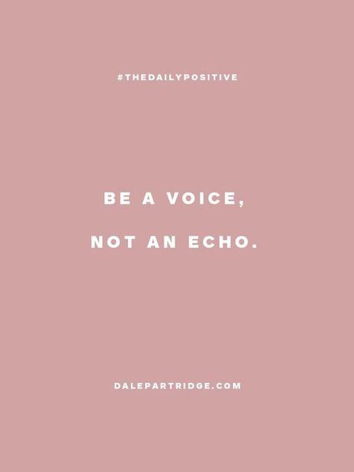 a voice, not an echo