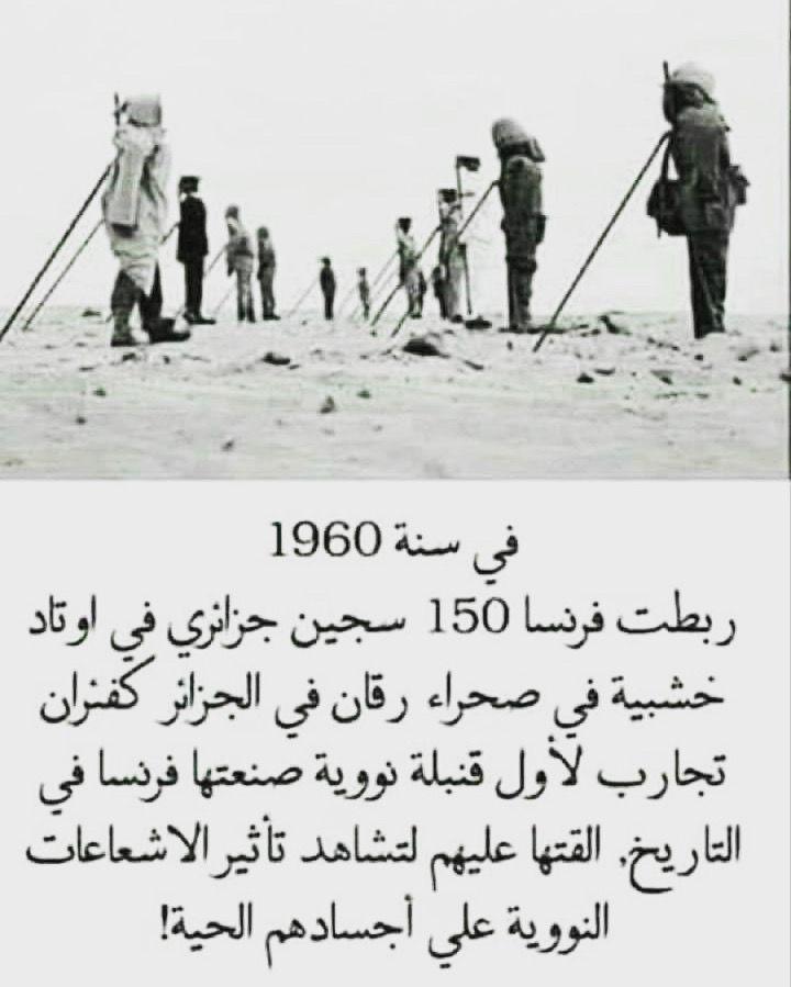 هل تعلم معلومات معلومة جزائر قنبلة تجربة Palestine History Egypt History History Figures
