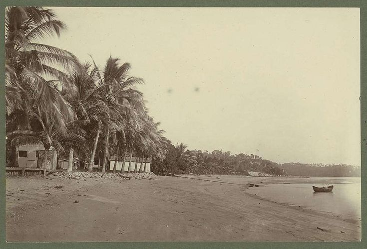 Picture of / about 'Palm Island' Queensland - Huts on a palm tree beach at Palm Island on the Queensland coast, 1932
