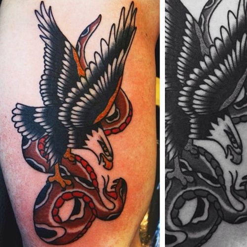 American Traditional Skull And Eagle: American Traditional Bald Eagle And Snake // Americana