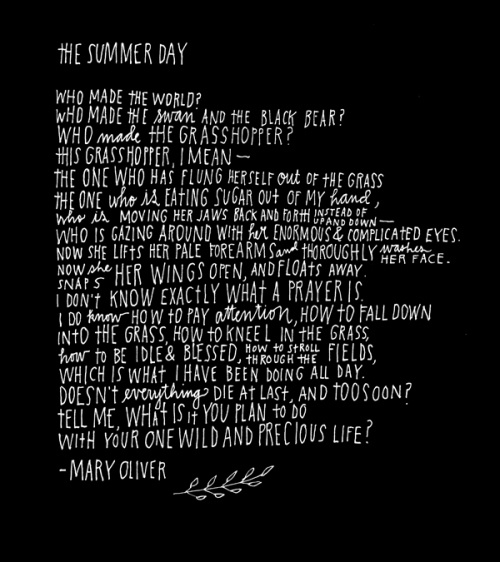 Mary Oliver, The Summer Day. The last lines of this poem, meg, are what made me fall in love w/ Oliver's poetry