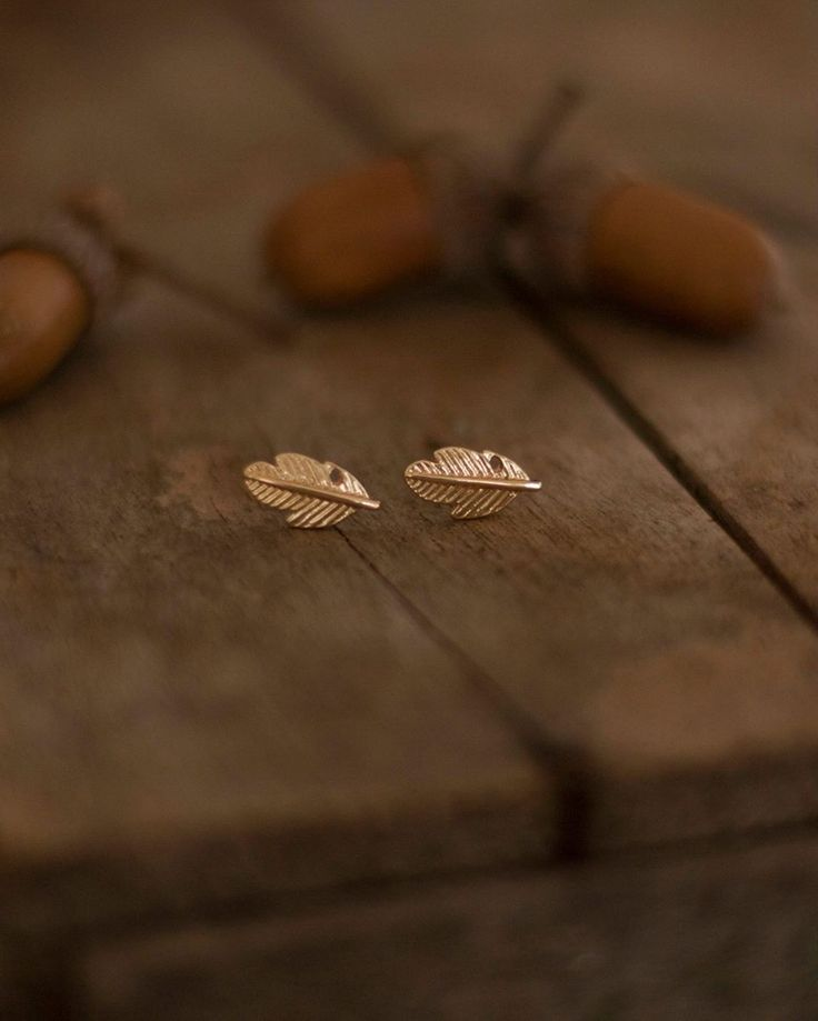 Feathers & acorns.