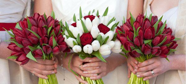 Dutch Tulip - 18 Nature's Finest November Wedding Flowers - EverAfterGuide