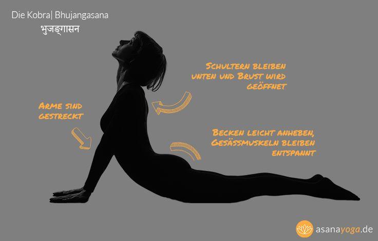 yoga f r anf nger videos infografiken mehr yoga. Black Bedroom Furniture Sets. Home Design Ideas