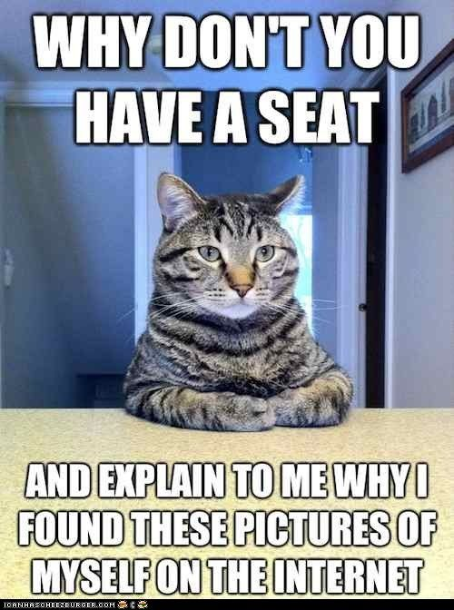 : Cats, Animals, Funny Cat, Funny Stuff, Humor, Funny Animal