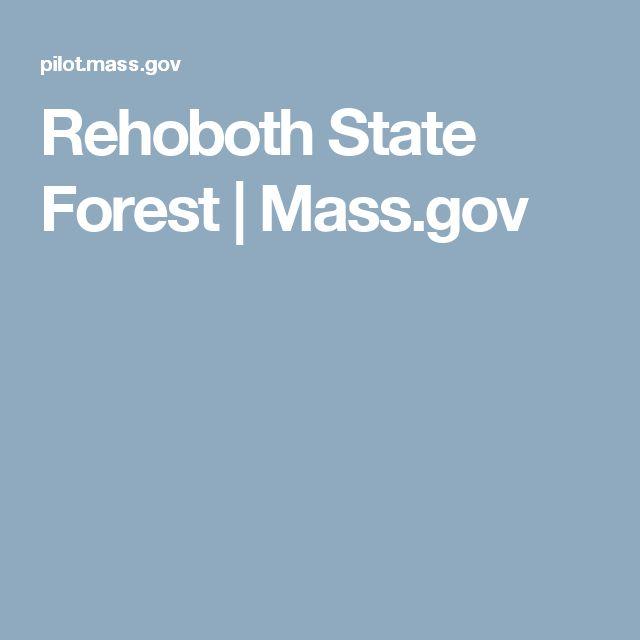 Rehoboth State Forest | Mass.gov