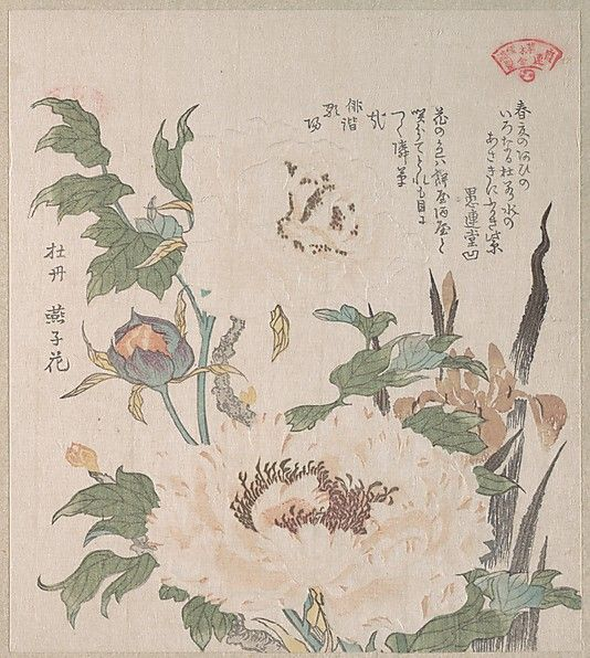 Kubo Shunman (Japanese, 1757–1820). Peonies and Iris, 19th century. Japan. The Metropolitan Museum of Art, New York. H. O. Havemeyer Collection, Bequest of Mrs. H. O. Havemeyer, 1929 (JP2308)