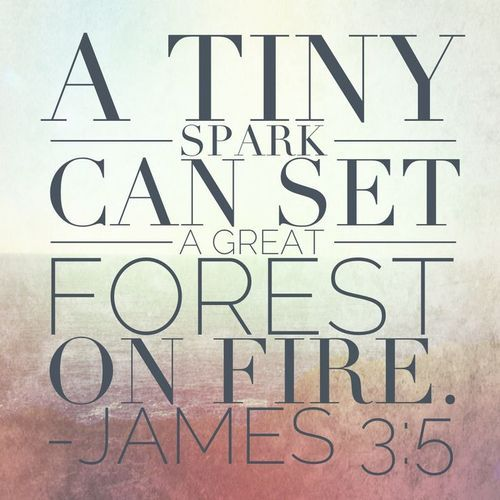 James 3:5 - (referring to the tongue) a tiny spark can set a great forest on fire.  #notperfect #james3_2