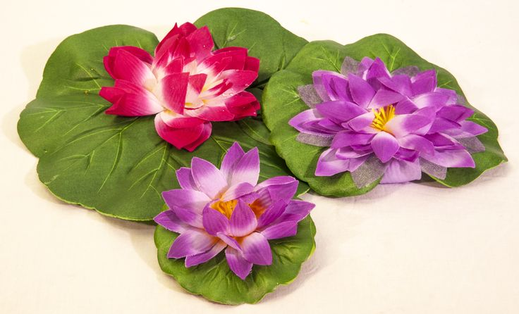 Pond Lilies ... Easy, simple and pretty idea to give your pond some colour.  Comes in a pack of 3 colourful Lilies.    www.waterhouse.co.za