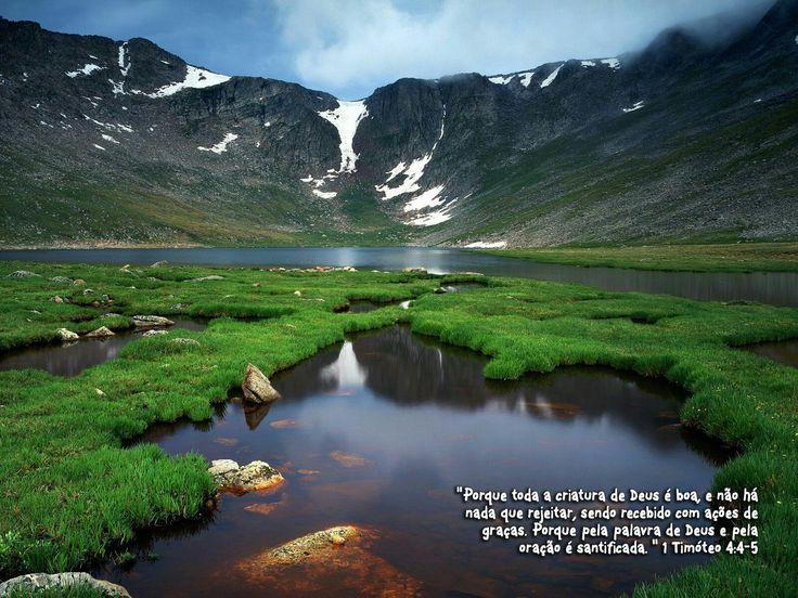 Versículos do Dia  Guarda a minha alma, e livra-me; não me deixes confundido, porquanto confio em ti.Salmos25:20  No qual temos ousadia e acesso com confiança, pela nossa fé nele.Efésios3:12