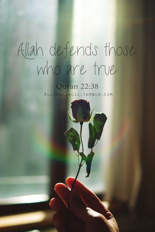 Indeed, Allah defends those who have believed. Indeed, Allah does not like everyone treacherous and ungrateful. [22:38]
