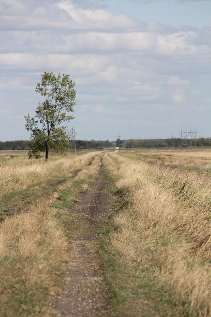 Dirt Road/Trail