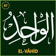 67_el_vahid