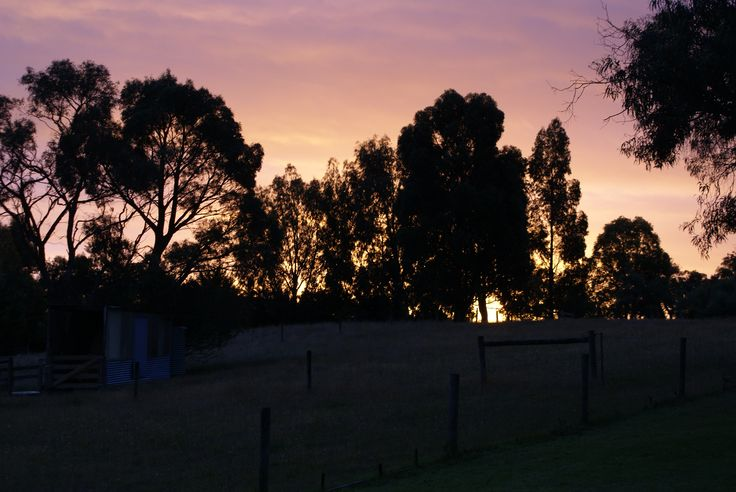 Just caught the last of the sun going down behind the neighbors hay shed just after 8.30pm. ISO 200, 1/40, f5.6, hand held.