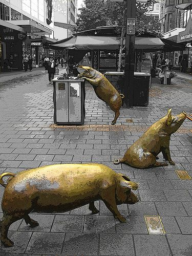 """""""pig sculptures in the Mall in Adelaide, Australia""""  (only thing missing is the banana peel and the milk carton etc in the rubbish bin - which is part of the artwork) with the rest in grey. S."""