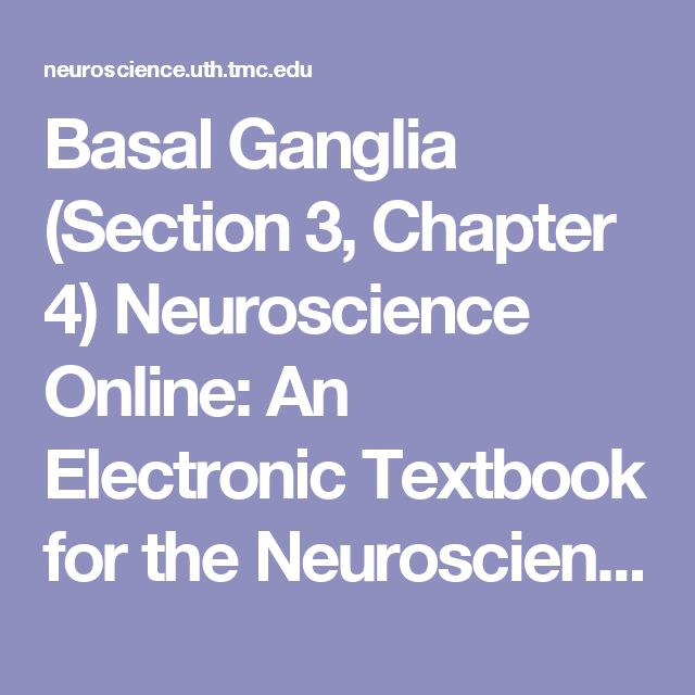 Basal Ganglia (Section 3, Chapter 4) Neuroscience Online: An Electronic Textbook for the Neurosciences | Department of Neurobiology and Anatomy - The University of Texas Medical School at Houston