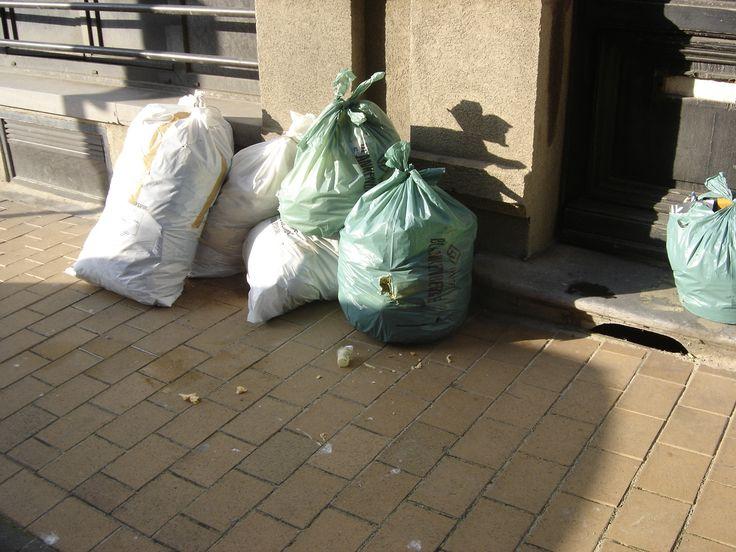 Om de overlast van meeuwen te beperken organiseert de stad Blankenberge jaarlijks nachtophaling van het huisvuil.  In 2016 gaat deze nachtophaling door van maandag 28.03.2016 tot en met zondag 25.09.2016.  De ophaling start dan vanaf 0u15.  Kijk uw afvalkalender na!