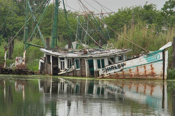 louisiana bayou | Terrebonne Parish Louisiana - search in pictures