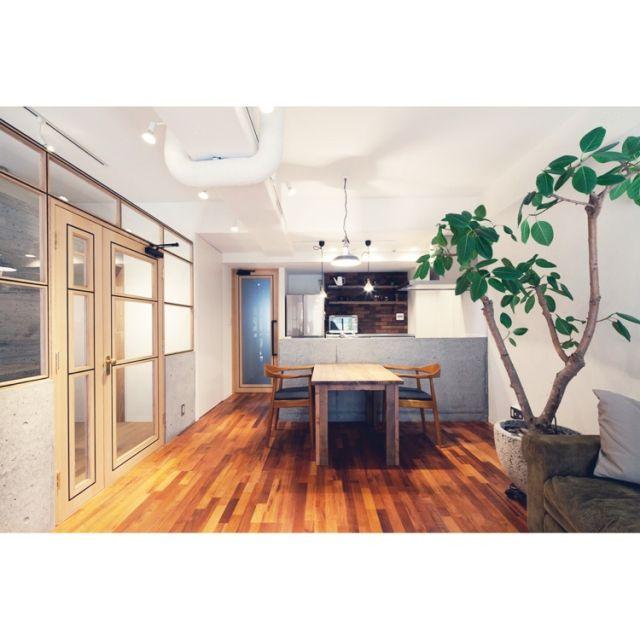taka55さんの、観葉植物,部屋全体,のお部屋写真